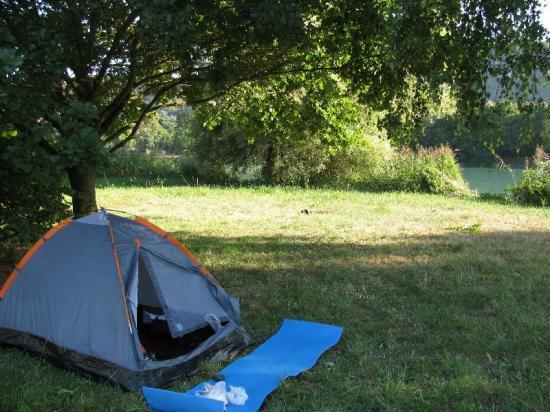 sous un chêne au bord du Rhône