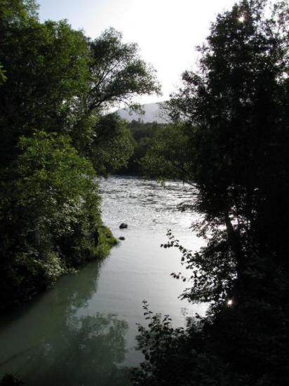 La Laire dans le Rhône à Chancy