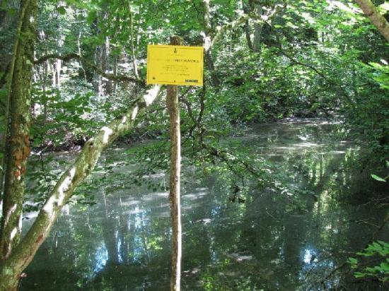 milieu aquatique sensible